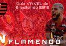 Palmeiras perde para o Grêmio e Flamengo conquista o Brasileirão