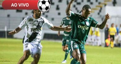 Vídeo: melhores momentos de Palmeiras X Ponte Preta