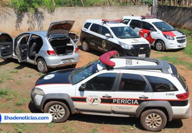 Ilha Solteira/SP: Polícia encontra plantio de maconha no Ipê.