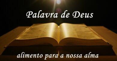 A Palavra do Dia – Domingo 25 de Outubro de 2020 | Bispa Virgínia Arruda.